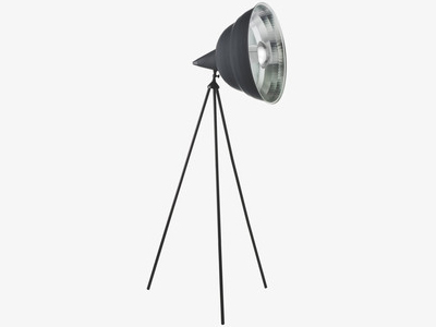 Habitat Photographic Floor Lamp
