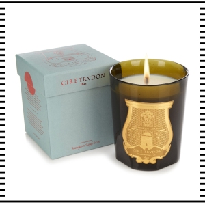 Cire Trudon Trvdon Candle Ernesto Scented Leather Tobacco accessory accessories fashion clothes clothing gift guide for him christmas guide presents gifts ideas 2016 mens menswear men's lifestyle fashion technology best top blog blogger blogging boyinbreton.com boy in breton