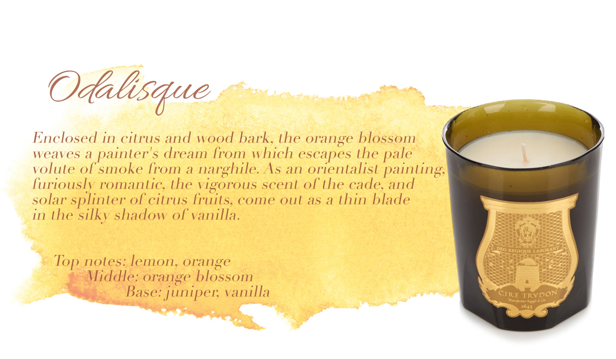 Odalisque Cire Trudon Candle Fragrance Ambience Scented Luxury Luxurious Masculine male favourites lifestyle home interiors blog blogger male mens boyinbreton boy in breton