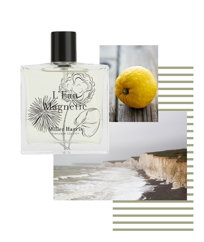 Miller Harris L'eau Magnetic citrus zesty bright parfum perfume fragrance luxury summer scents men menswear style fashion lifestyle boyinbreton.com boy in breton